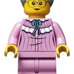 LEGO 21315 Pop Up Buch Großmutter