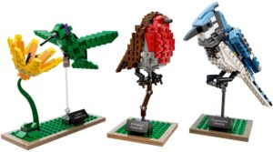 21301 LEGO Ideas Birds