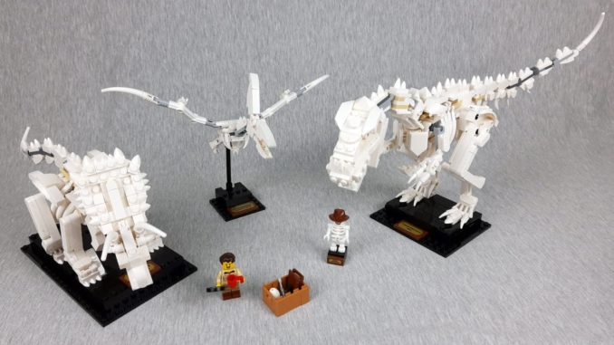 LEGO Ideas 21320 - Dinosaurier Fossilien