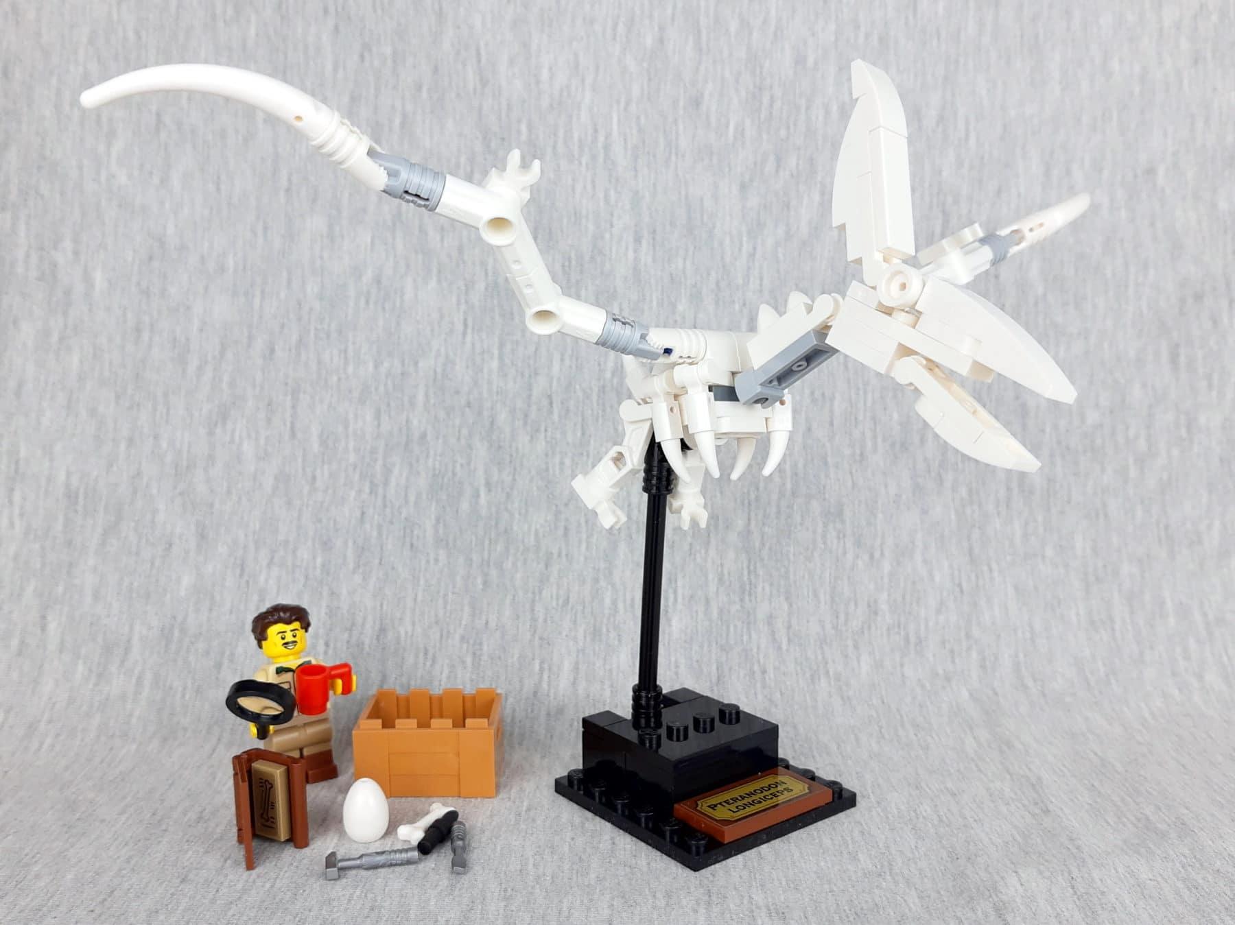 LEGO Ideas 21320 - Dinosaurier Fossilien: Bauabschnitt 1