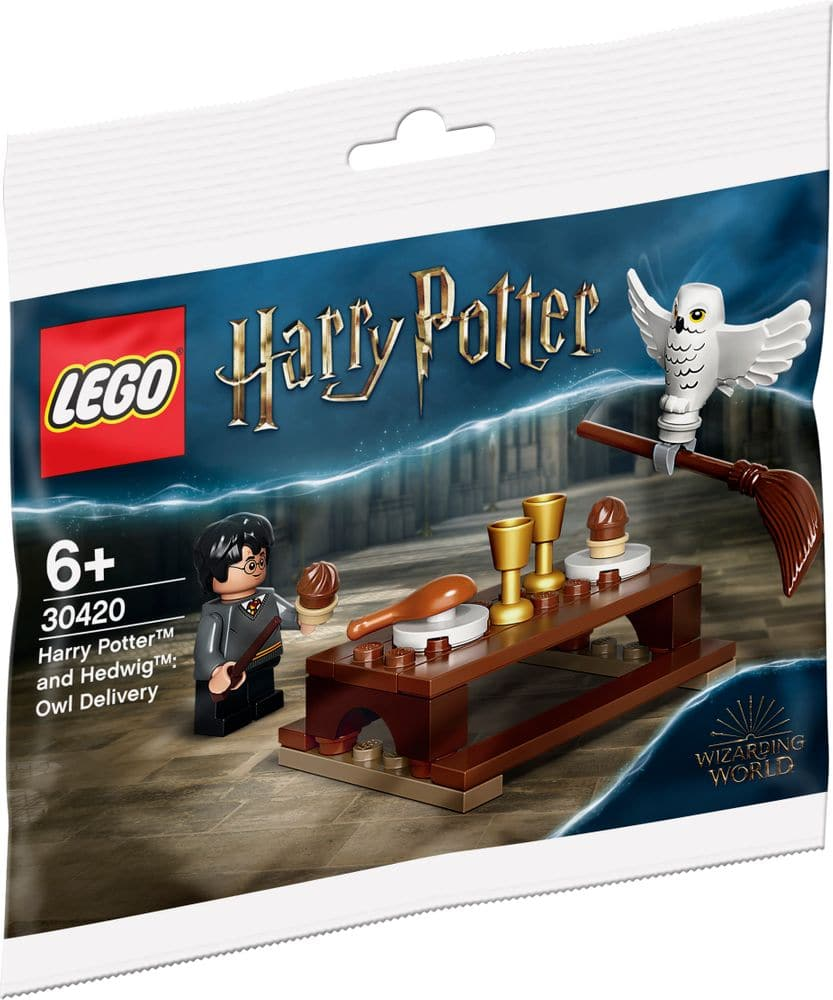 LEGO 30420 Harry Potter Hedwig Und Harry Polybag