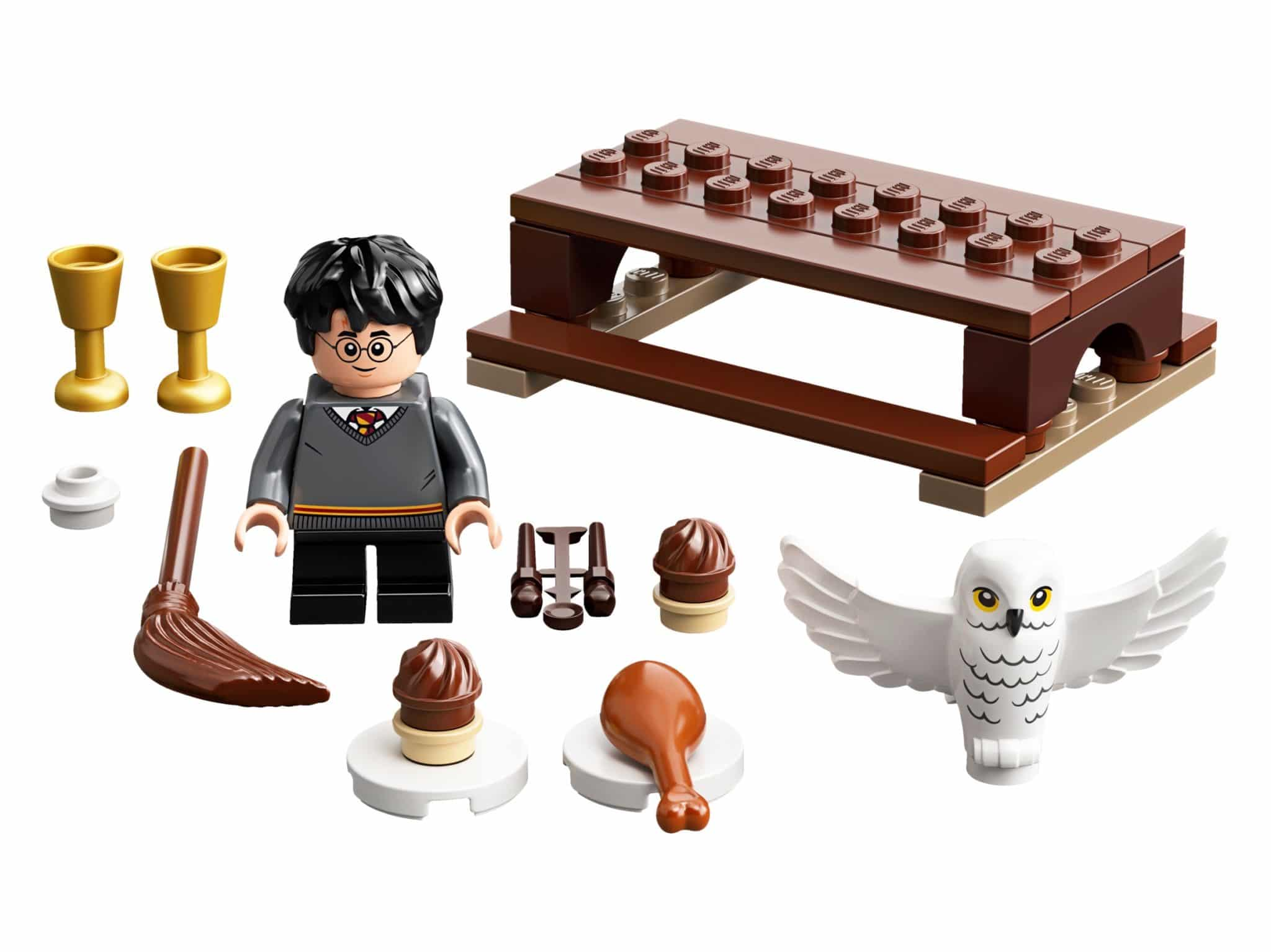 LEGO Harry Potter 30420 Polybag mit Harry und Hedwig