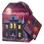 LEGO 854049 Seasonal Pumpkin & Bat Duo
