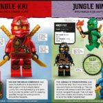 LEGO Ninjago Character Encyclopedia New Edition Inhalt 3