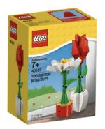 LEGO Iconic Eol 2020 2
