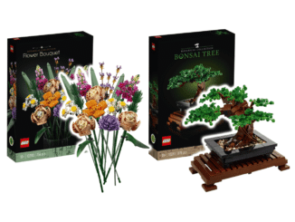LEGO Botanical Collection: Bonsai und Blumenstrauß