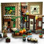 LEGO Harry Potter 76384 Kräuterkundeunterricht (7)
