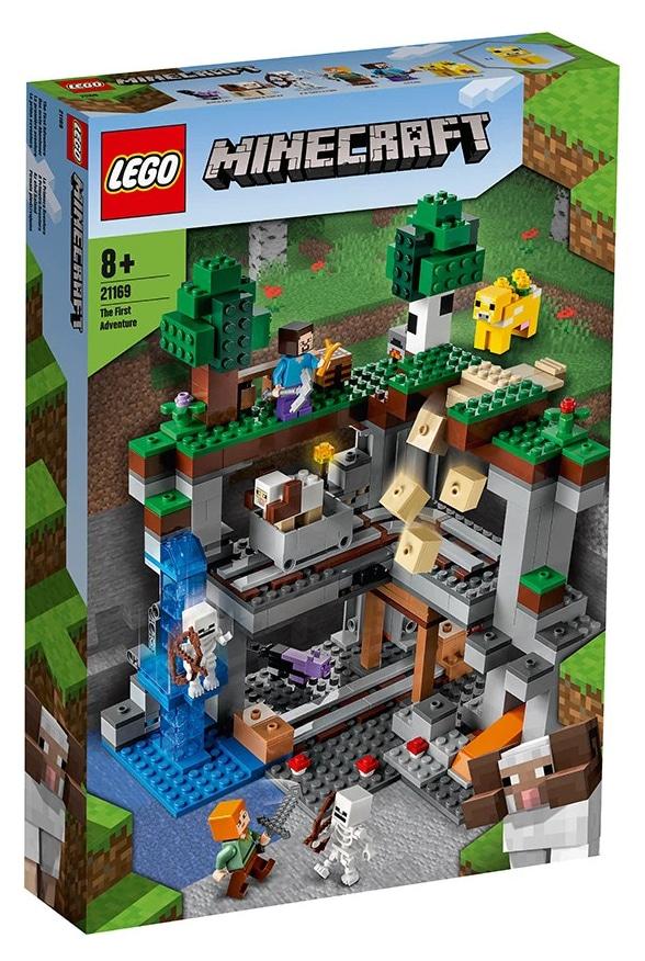 LEGO Minecraft 21169 Das Erste Abenteuer 10
