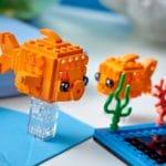 LEGO Brickheadz 40442 Goldfisch 5