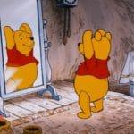 LEGO 21326 Winnie Pooh Screenshot Video 3
