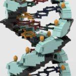 LEGO Ideas Dna Helix (4)