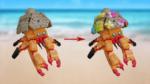 LEGO Ideas Seaside Contest 09 Customize A Crab