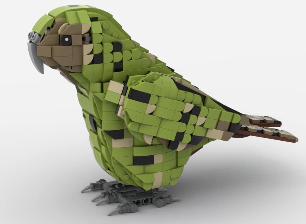 Bdp 2021 Kakapo Vergleich01
