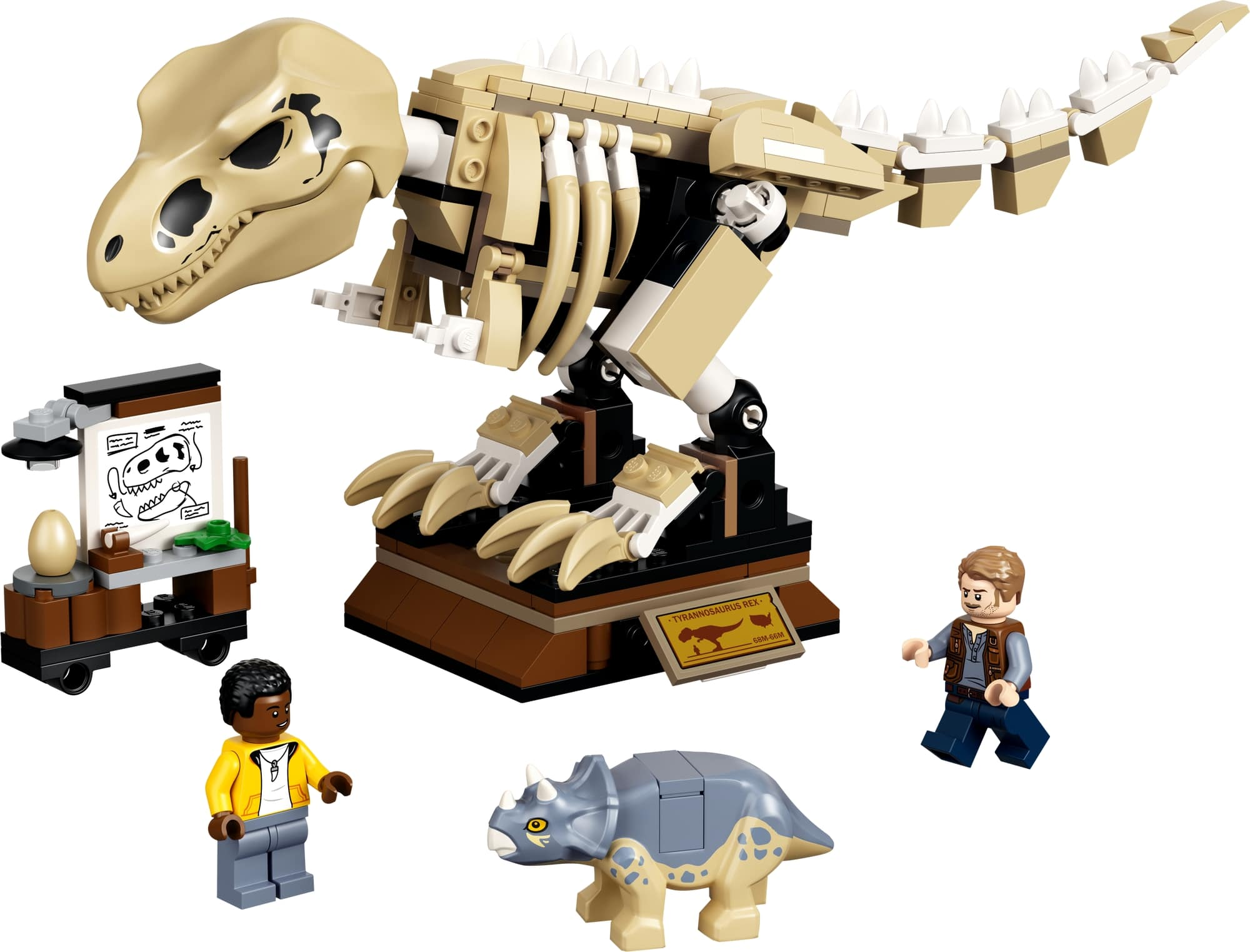 LEGO Jurassic World 76940 T. Rex Skelett In Der Fossilienausstellung 1