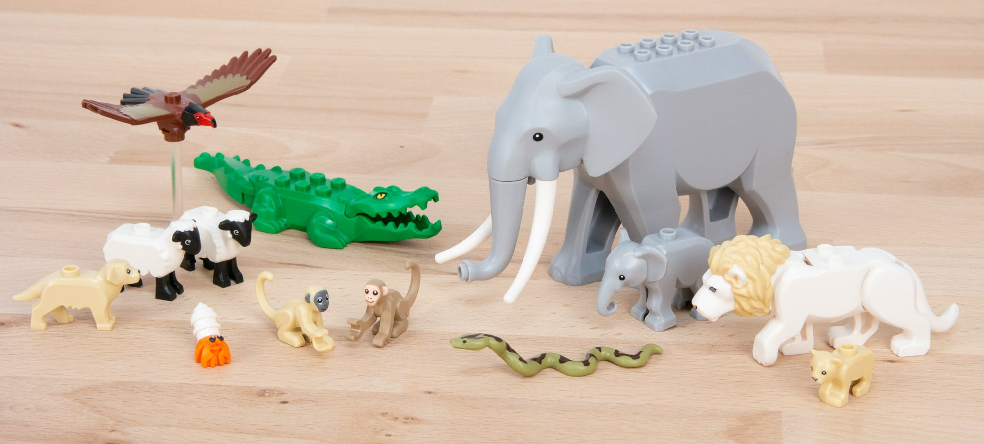 LEGO Tiere Gruppenfoto