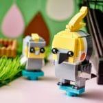 LEGO Brickheadz 40481 Nymphensittich 6