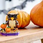 LEGO Seasonal 40497 Halloween Eule 4
