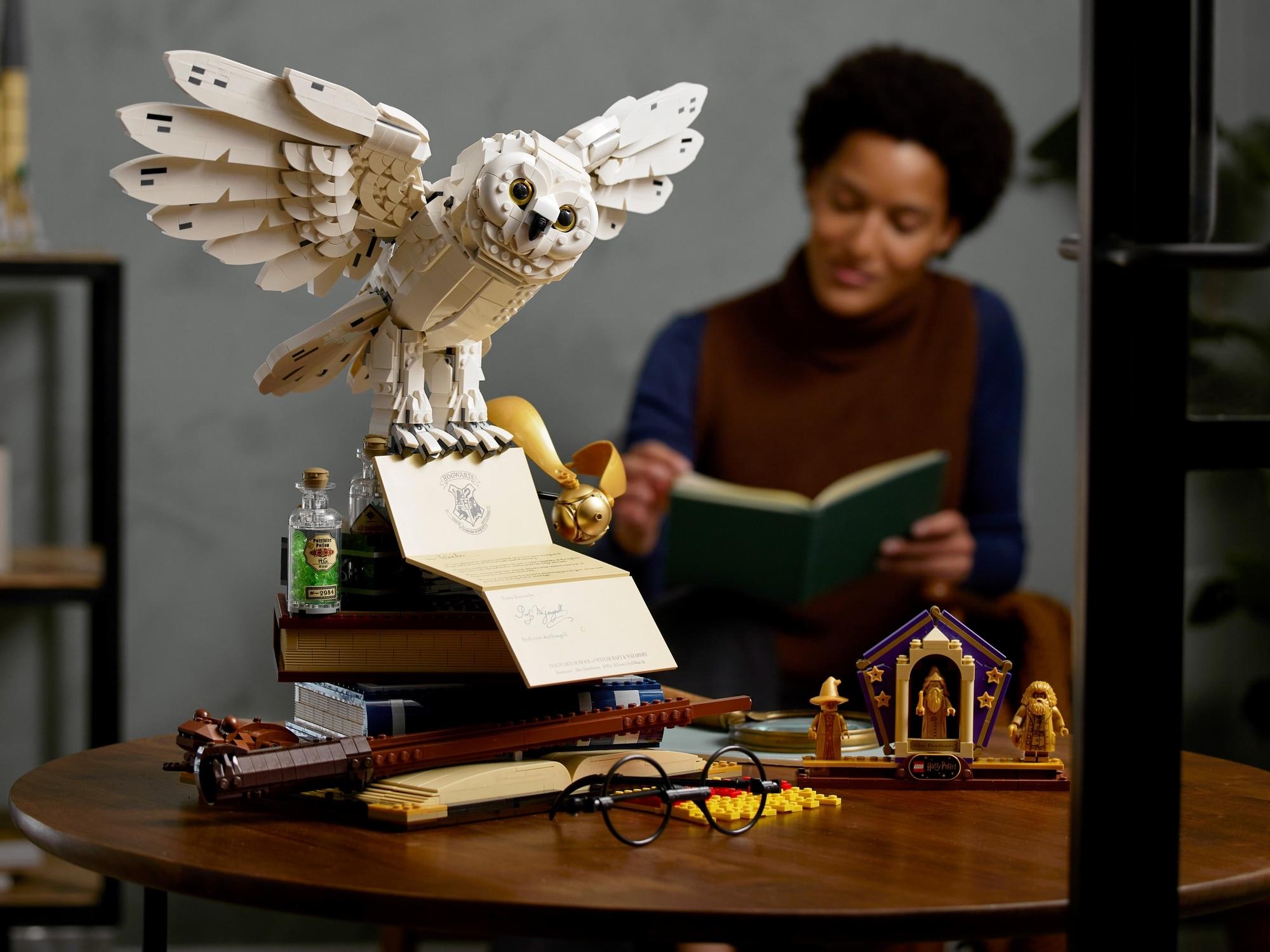 LEGO Harry Potter 76391 Hogwarts Ikonen Sammler Edition 17